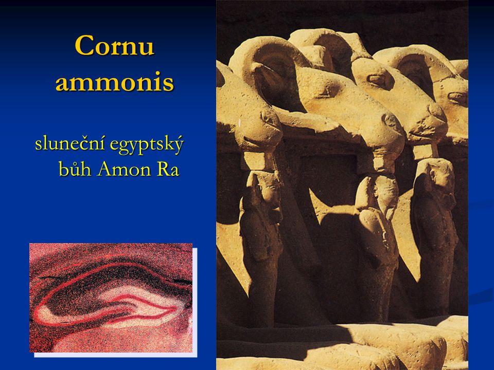 Cornu ammonis sluneční egyptský bůh Amon Ra