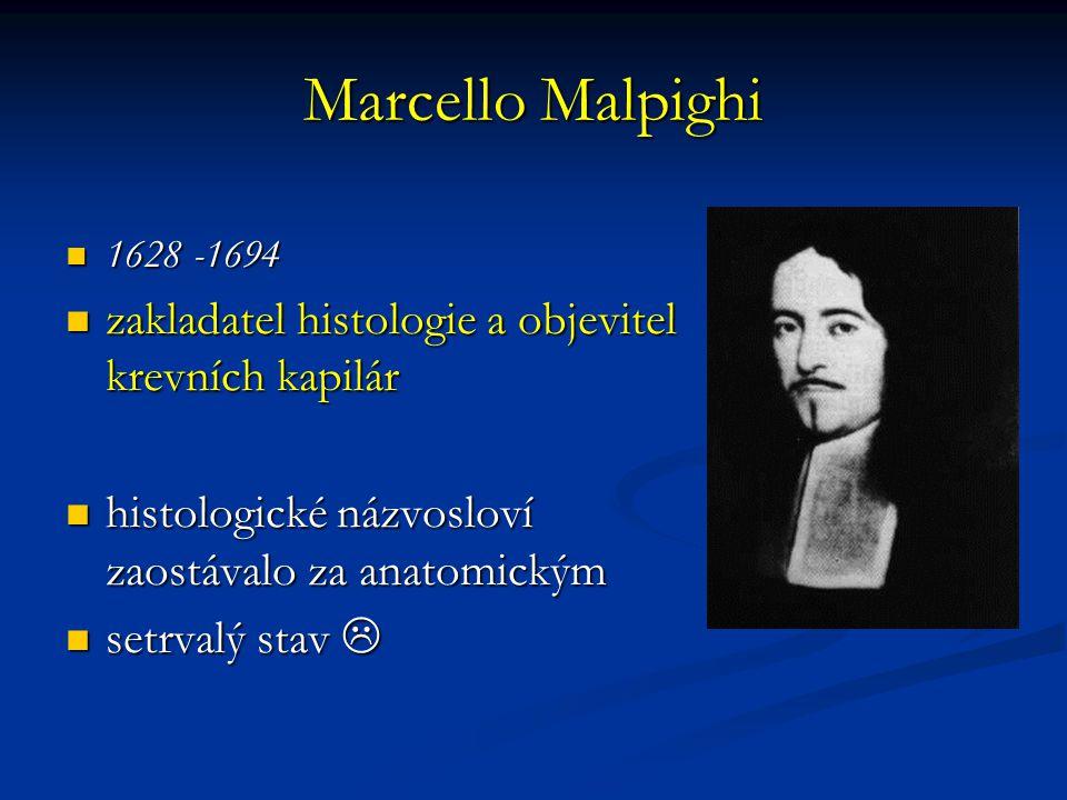 Marcello Malpighi 1628 -1694 1628 -1694 zakladatel histologie a objevitel krevních kapilár zakladatel histologie a objevitel krevních kapilár histolog