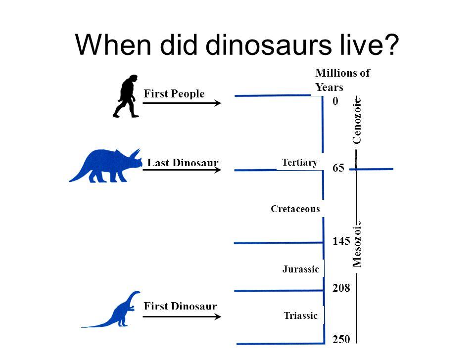 Dinosaur Communities