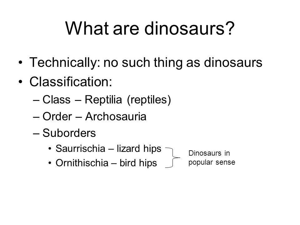 Who were the Sauropods? Brontosaurus