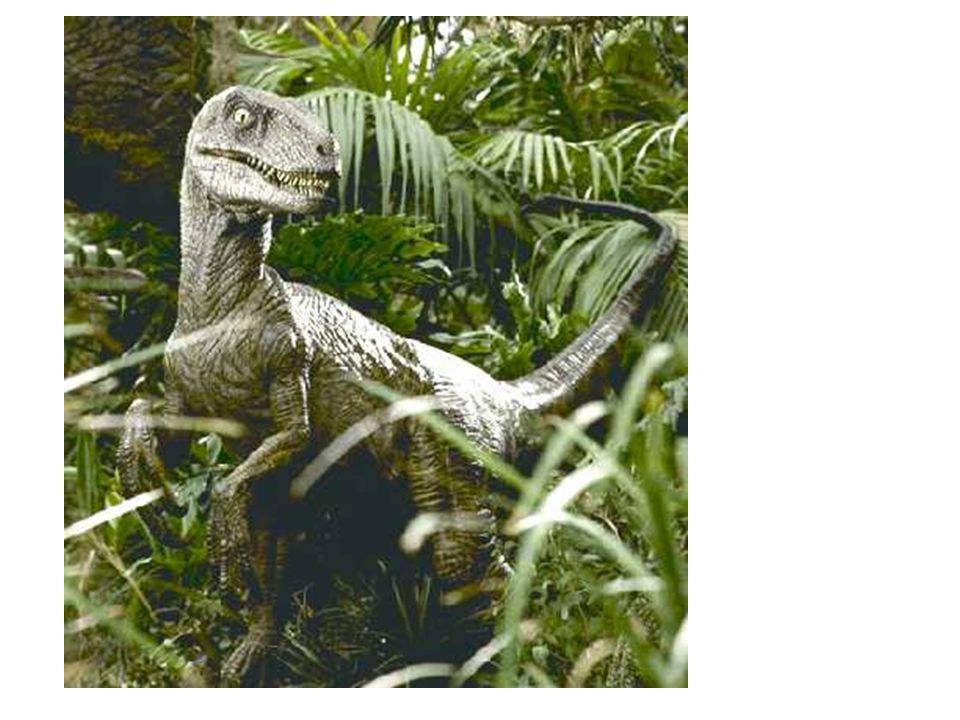 Velociraptor (Jurassic Park)