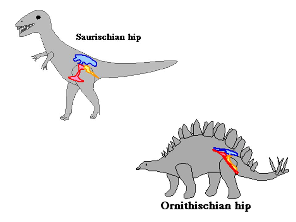 Superiority of predators Mammals generally superior to reptiles