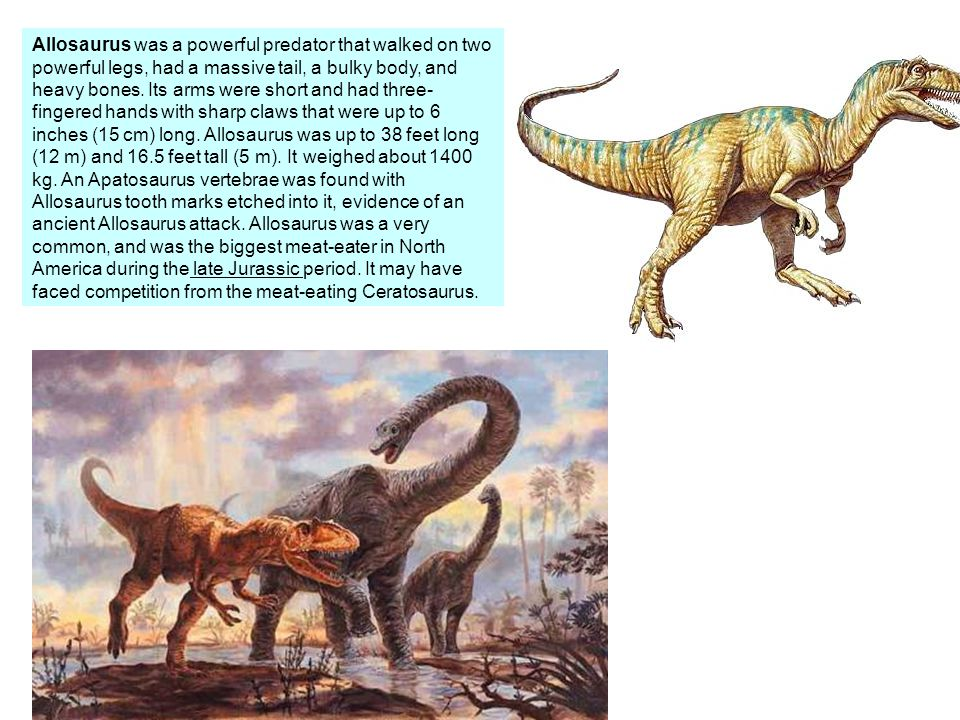Teratosaurs