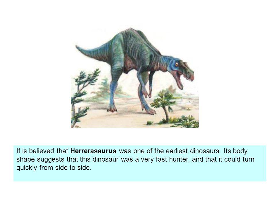 It is believed that Herrerasaurus was one of the earliest dinosaurs.