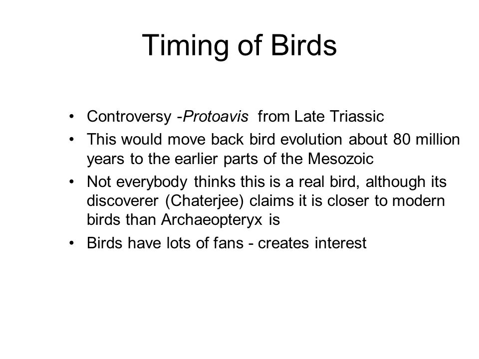 Timing of Birds Lots of bird diversification in the Cenozoic, although most fossils are incomplete. By the Early Oligocene (35 Ma), most modern bird g