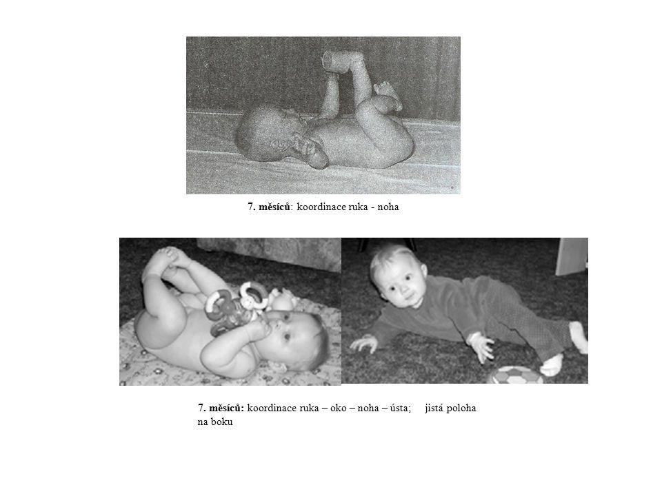 7. měsíců: koordinace ruka – oko – noha – ústa; jistá poloha na boku 7. měsíců: koordinace ruka - noha