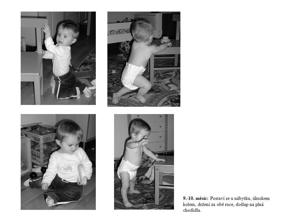 9.-10. měsíc: Postaví se u nábytku, úkrokem kolem, držení za obě ruce, došlap na plná chodidla.