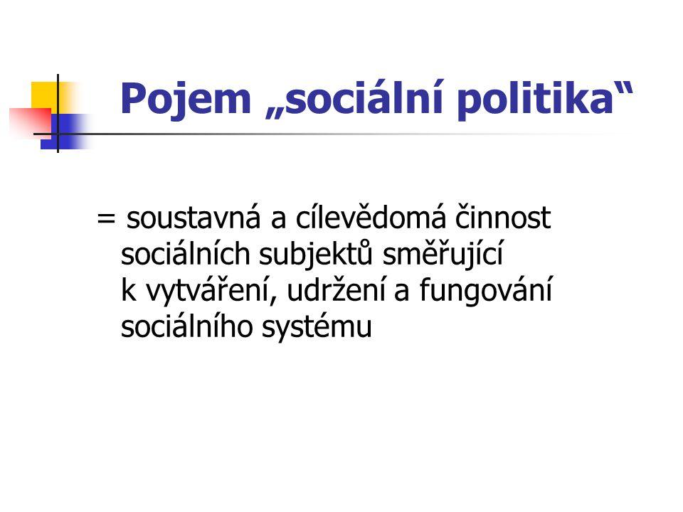 Sociální subjekty  Hlavní subjekt: stát  Další subjekty: zaměstnavatelé, odborové orgány, obce, občanské iniciativy a spolky, církve a občané, rodiny, domácnosti, jednotlivci