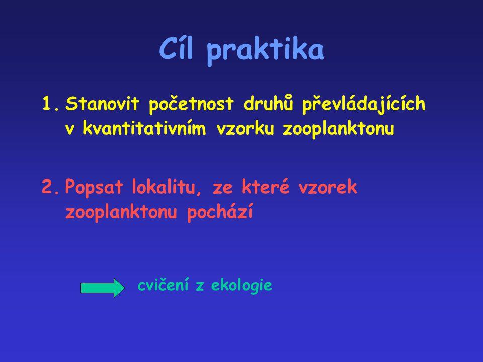 Cíl praktika 1.Stanovit početnost druhů převládajících v kvantitativním vzorku zooplanktonu 2.Popsat lokalitu, ze které vzorek zooplanktonu pochází cv