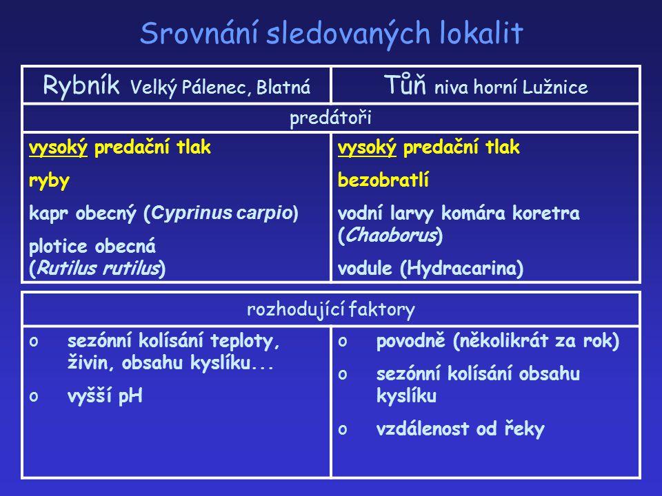 Srovnání sledovaných lokalit Rybník Velký Pálenec, Blatná Tůň niva horní Lužnice predátoři vysoký predační tlak ryby kapr obecný ( Cyprinus carpio) pl