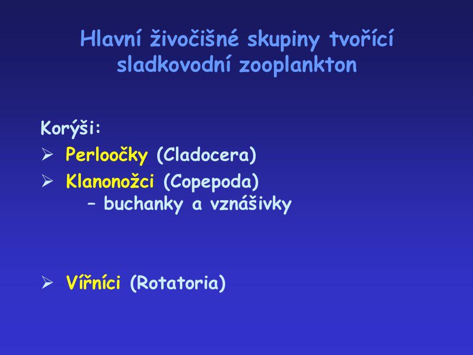 Hlavní živočišné skupiny tvořící sladkovodní zooplankton Korýši:  Perloočky (Cladocera)  Klanonožci (Copepoda) – buchanky a vznášivky  Vířníci (Rot