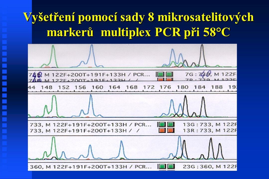 Vyšetření pomocí sady 8 mikrosatelitových markerů multiplex PCR při 58°C