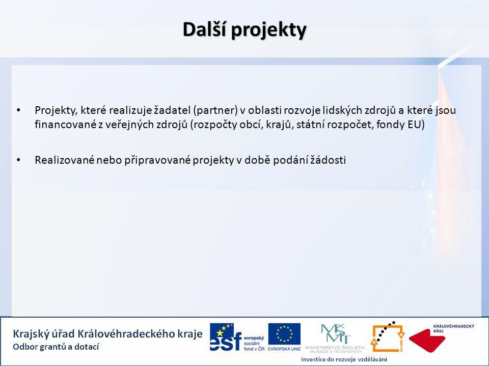 Další projekty Projekty, které realizuje žadatel (partner) v oblasti rozvoje lidských zdrojů a které jsou financované z veřejných zdrojů (rozpočty obcí, krajů, státní rozpočet, fondy EU) Realizované nebo připravované projekty v době podání žádosti