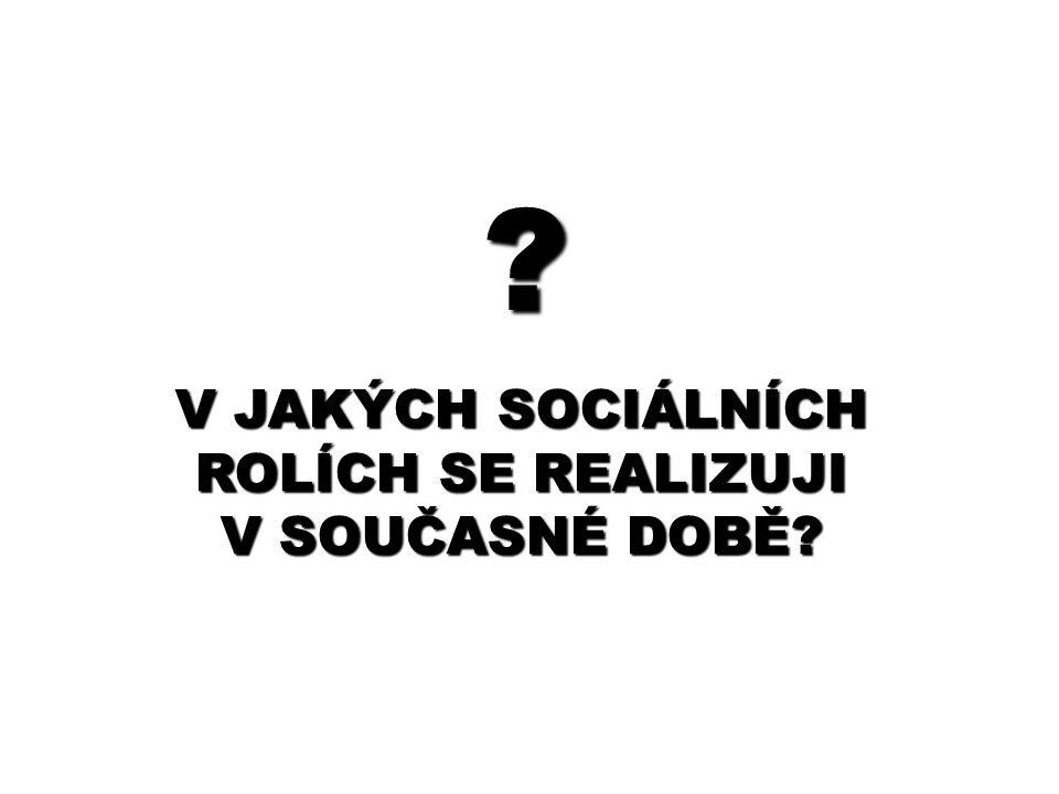 ? V JAKÝCH SOCIÁLNÍCH ROLÍCH SE REALIZUJI V SOUČASNÉ DOBĚ?