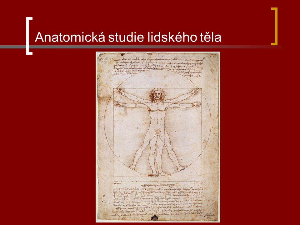 Michelangelo Buonarroti malíř, sochař a architekt Chrám sv. Petra v Římě