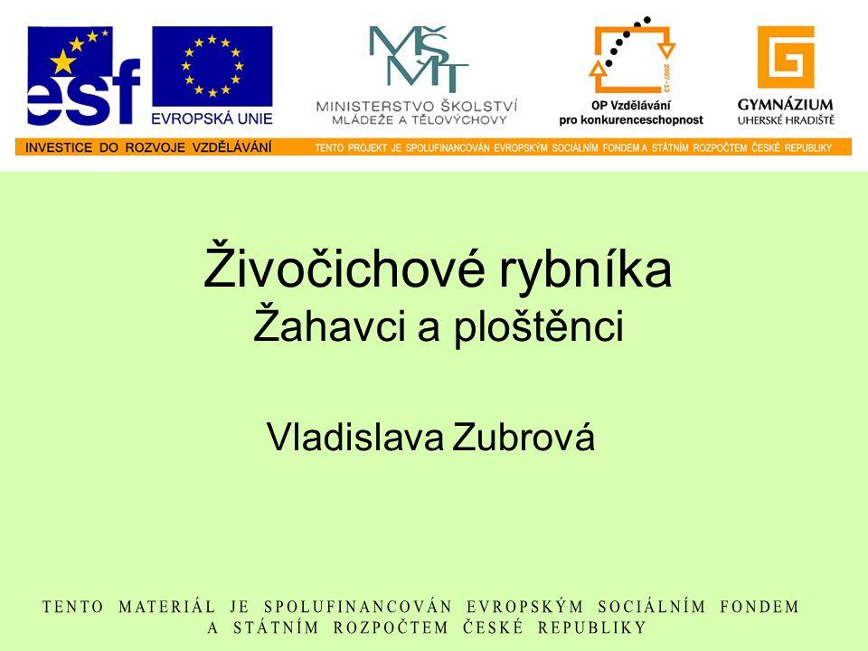 Živočichové rybníka Žahavci a ploštěnci Vladislava Zubrová