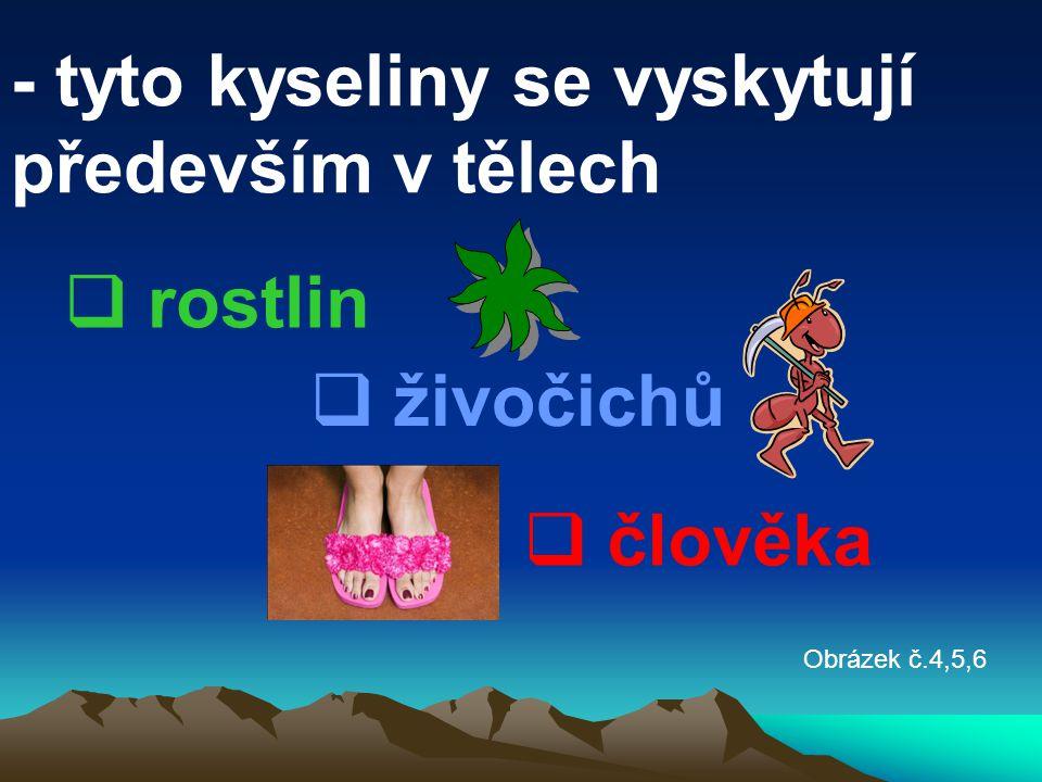 - tyto kyseliny se vyskytují především v tělech  rostlin  člověka  živočichů Obrázek č.4,5,6