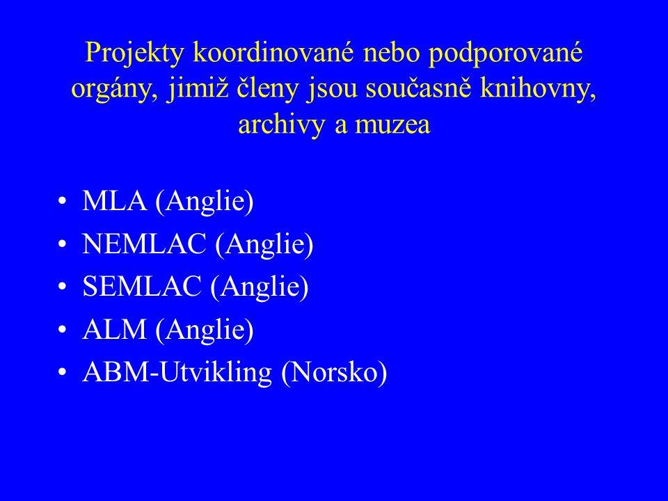 Projekty koordinované nebo podporované orgány, jimiž členy jsou současně knihovny, archivy a muzea MLA (Anglie) NEMLAC (Anglie) SEMLAC (Anglie) ALM (Anglie) ABM-Utvikling (Norsko)