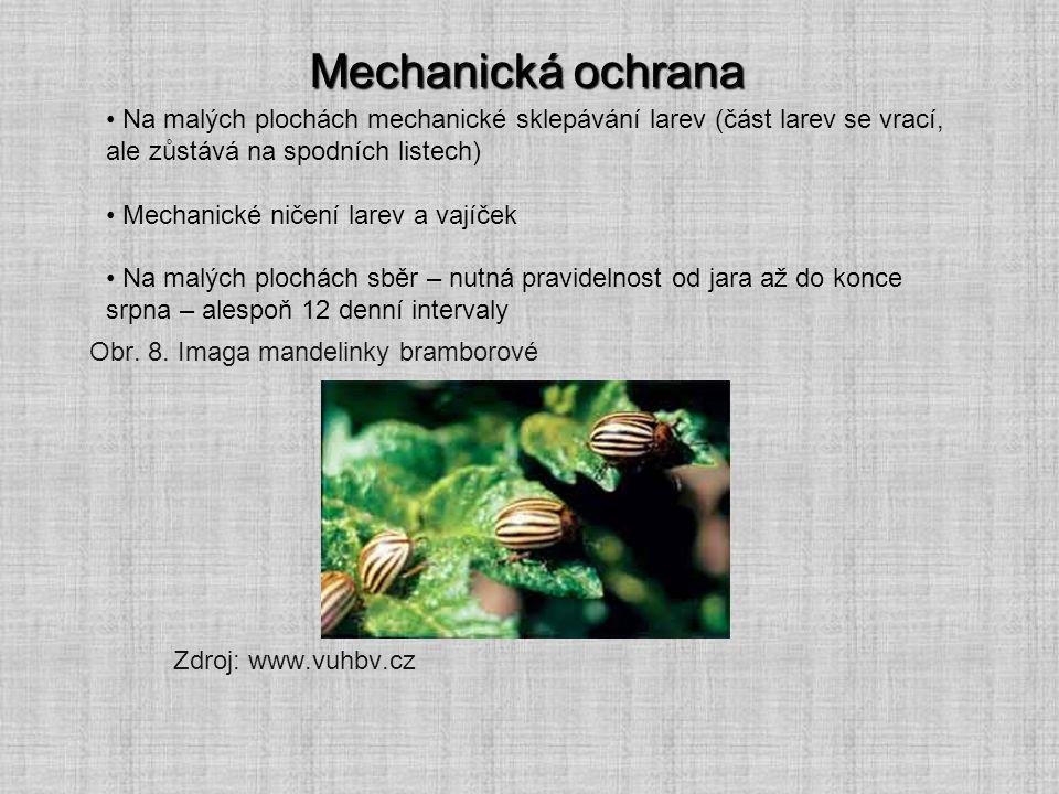 Mechanická ochrana Na malých plochách mechanické sklepávání larev (část larev se vrací, ale zůstává na spodních listech) Mechanické ničení larev a vaj