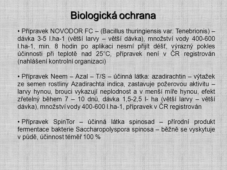 Biologická ochrana Přípravek NOVODOR FC – (Bacillus thuringiensis var. Tenebrionis) – dávka 3-5 l.ha-1 (větší larvy – větší dávka), množství vody 400-