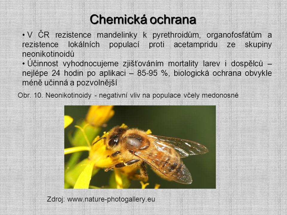 Chemická ochrana V ČR rezistence mandelinky k pyrethroidům, organofosfátům a rezistence lokálních populací proti acetampridu ze skupiny neonikotinoidů