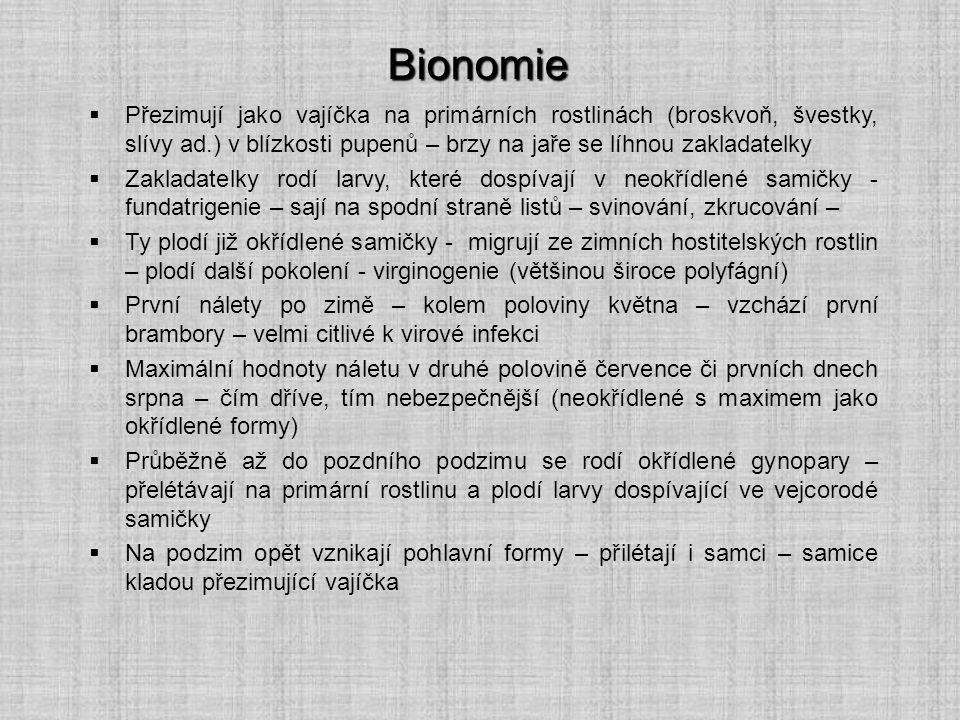 Bionomie  Přezimují jako vajíčka na primárních rostlinách (broskvoň, švestky, slívy ad.) v blízkosti pupenů – brzy na jaře se líhnou zakladatelky  Z