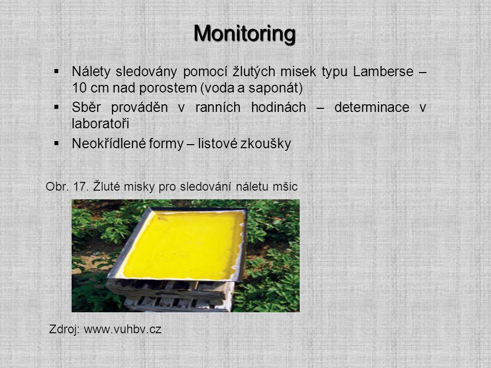Monitoring  Nálety sledovány pomocí žlutých misek typu Lamberse – 10 cm nad porostem (voda a saponát)  Sběr prováděn v ranních hodinách – determinac