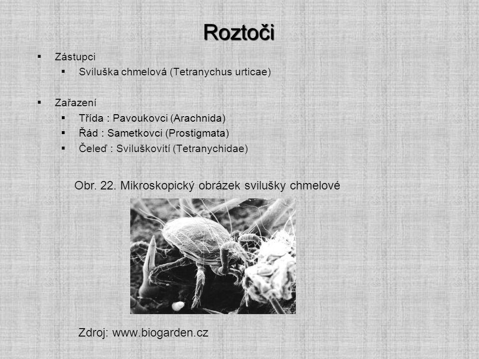 Roztoči  Zástupci  Sviluška chmelová (Tetranychus urticae)  Zařazení  Třída : Pavoukovci (Arachnida)  Řád : Sametkovci (Prostigmata)  Čeleď : Sviluškovití (Tetranychidae) Zdroj: www.biogarden.cz Obr.