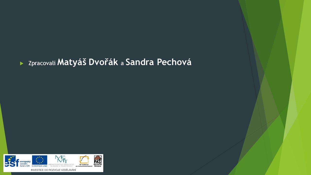  Zpracovali Matyáš Dvořák a Sandra Pechová