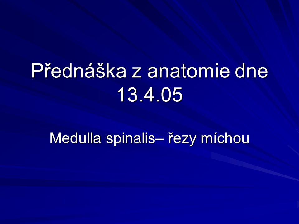 Medulla spinalis - hřbetní mícha Medulla spinalis - hřbetní mícha Válcovitý provazec nervové tkáně 40 - 50 cm dlouhý Rozměry : v nejširším místě krční páteře 13 – 9 mm, v hrudní části kolem 10 – 8 mm, v bederní části 12 – 8,5 mm Mícha začíná pod foramen magnum v místě výstupu C1 míšního nervu v oblasti decussatio pyramidum Konec míchy L1/L2 u mužů, L2 u žen, končí kuželovitým zakončením conus medullaris, dále pokračuje jako filum terminale, které srůstá s periostem S2