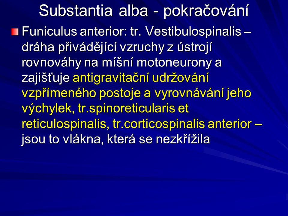 Substantia alba - pokračování Funiculus anterior: tr.