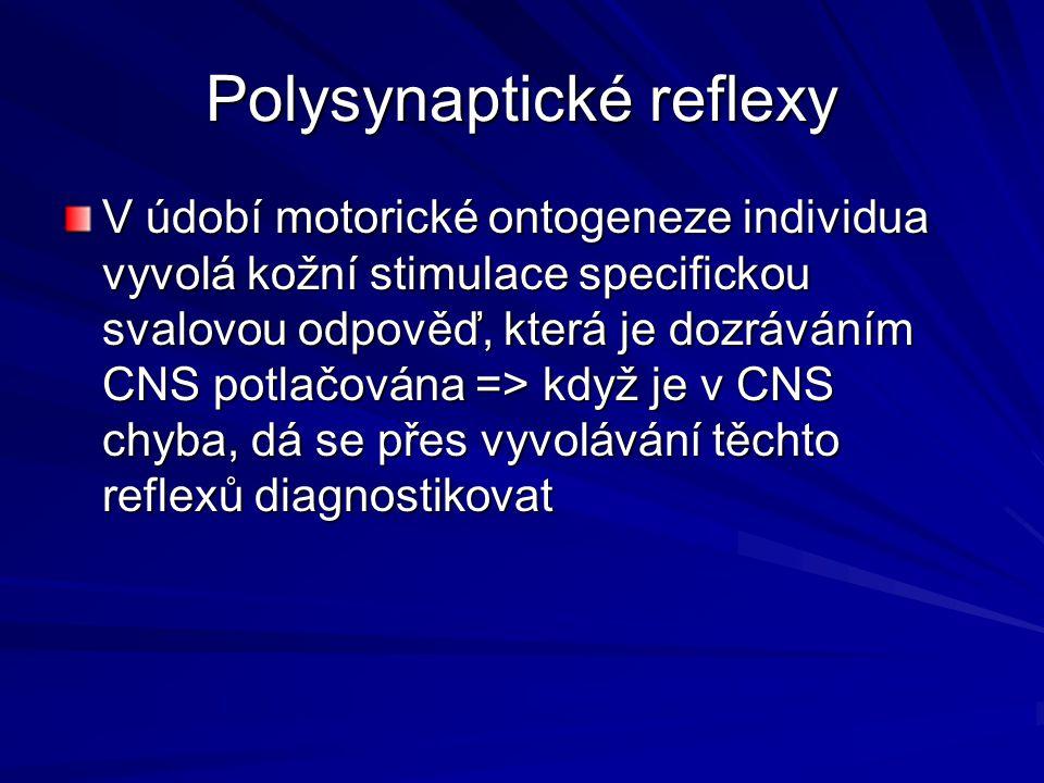 Polysynaptické reflexy V údobí motorické ontogeneze individua vyvolá kožní stimulace specifickou svalovou odpověď, která je dozráváním CNS potlačována => když je v CNS chyba, dá se přes vyvolávání těchto reflexů diagnostikovat