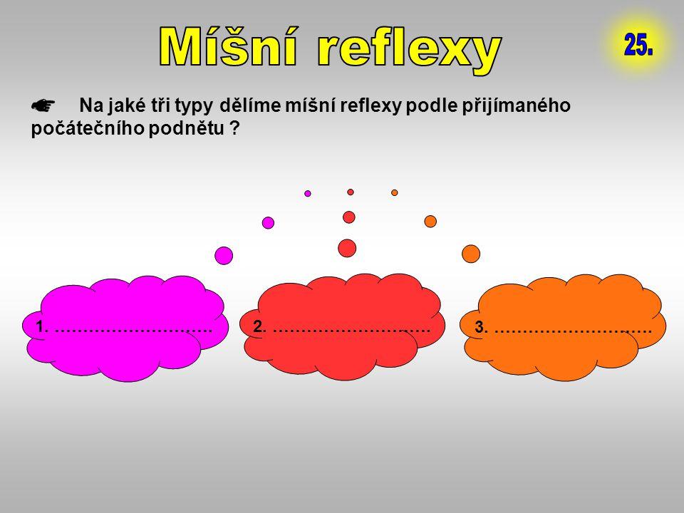 Na jaké tři typy dělíme míšní reflexy podle přijímaného počátečního podnětu ? 1. ………………………. 2. ………………………. 3. ……………………….