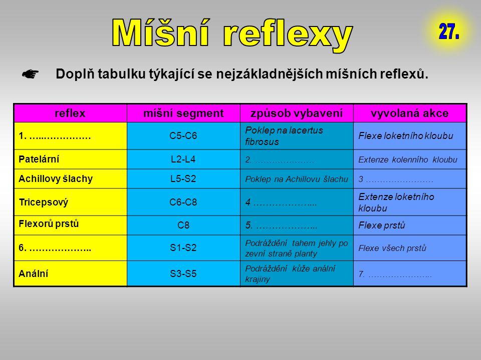 Doplň tabulku týkající se nejzákladnějších míšních reflexů. reflexmíšní segmentzpůsob vybavenívyvolaná akce 1. …..……………C5-C6 Poklep na lacertus fibros