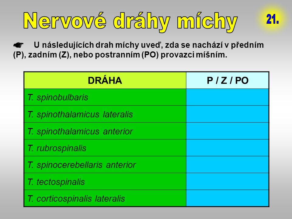 U následujících drah míchy uveď, zda se nachází v předním (P), zadním (Z), nebo postranním (PO) provazci míšním. DRÁHAP / Z / PO T. spinobulbarisZ T.