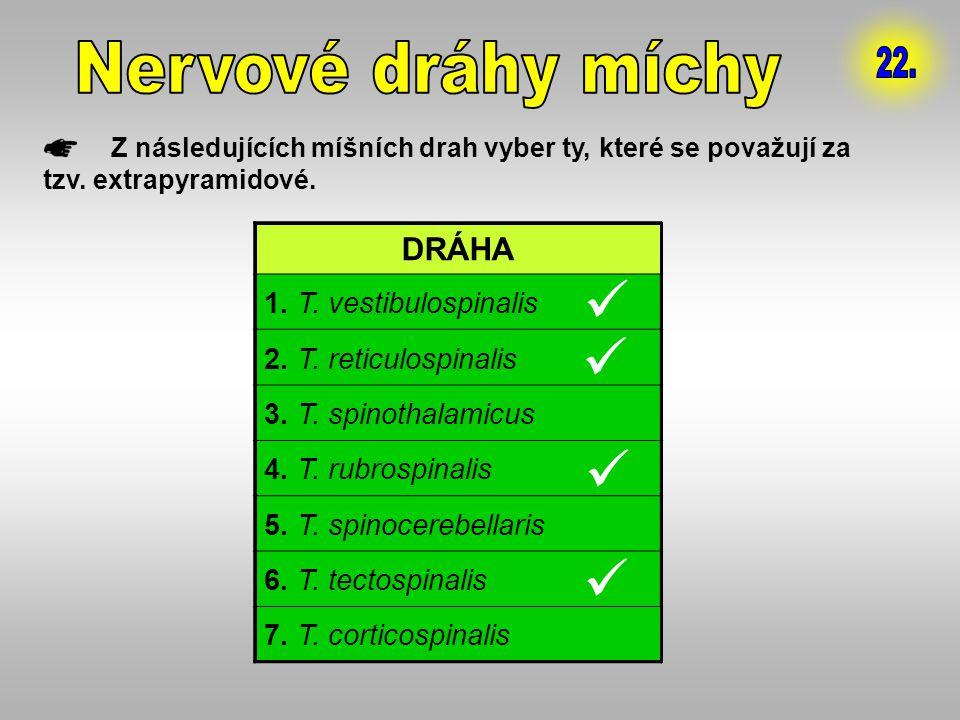 Z následujících míšních drah vyber ty, které se považují za tzv. extrapyramidové. DRÁHA 1. T. vestibulospinalis 2. T. reticulospinalis 3. T. spinothal