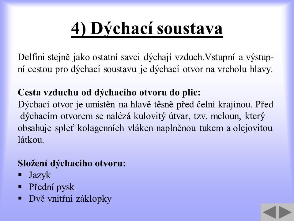 Odpověď na otázku č.4 Správně Zpět na otázku č.5