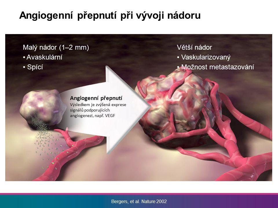Vznik vrcholové buňky Uvolnění spojů (VE-cadherin) Remodelace matrix (MMPs) Utvoření vrcholové buňky (VEGFR-2, DLL4, JAGGED1, NRP1, integriny, HIF-1α, MT1-MMP.