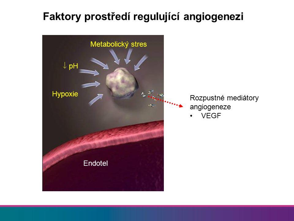 Uváděný též jako VEGF-A Příbuzné molekuly VEGF B–E, PIGF Homodimerický glykoprotein Molekulová váha: 45 000Da Váže se na VEGFR-2 receptor a heparan sulfát Čtyři molekulární typy VEGF 121 VEGF 165* VEGF 189 VEGF 206 VEGF Ferrara, et al.
