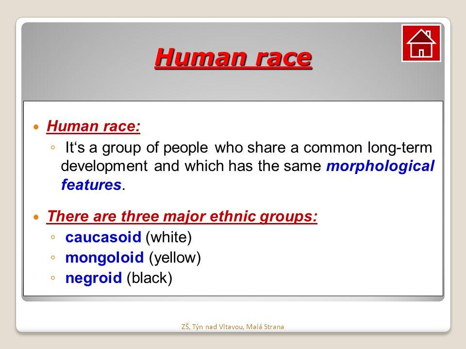 Lidské rasy Lidská rasa: ◦ Je skupina lidí, kterou spojuje dlouhodobý společný vývoj, a která má stejné morfologické znaky.
