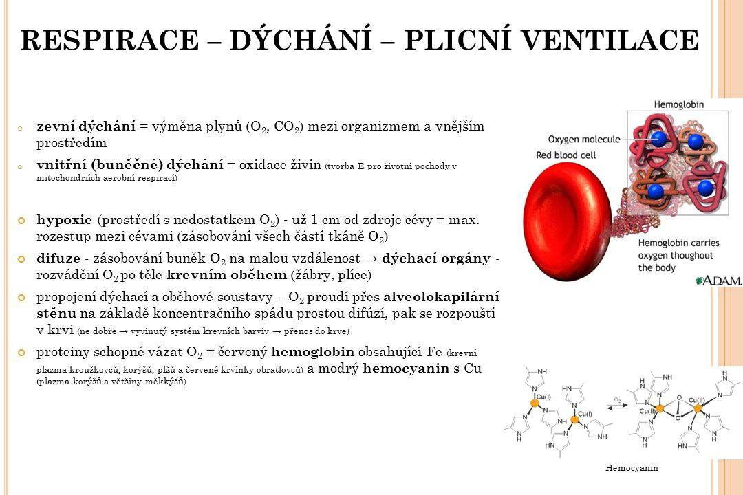 RESPIRACE – DÝCHÁNÍ – PLICNÍ VENTILACE o zevní dýchání = výměna plynů (O 2, CO 2 ) mezi organizmem a vnějším prostředím o vnitřní (buněčné) dýchání =