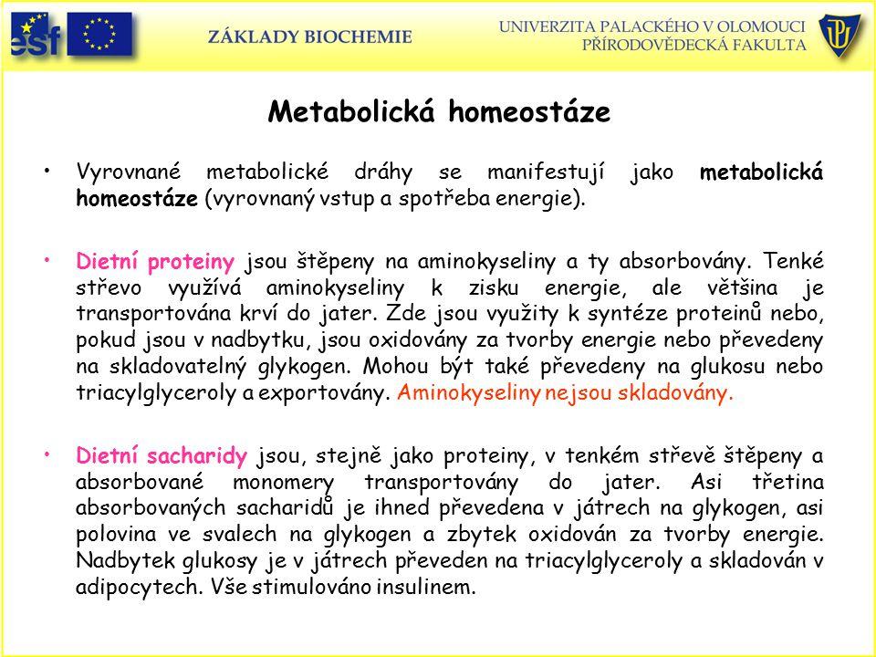 Metabolická homeostáze Vyrovnané metabolické dráhy se manifestují jako metabolická homeostáze (vyrovnaný vstup a spotřeba energie). Dietní proteiny js