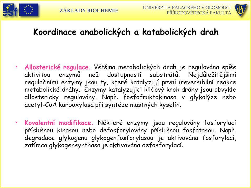 Koordinace anabolických a katabolických drah Allosterické regulace. Většina metabolických drah je regulována spíše aktivitou enzymů než dostupností su