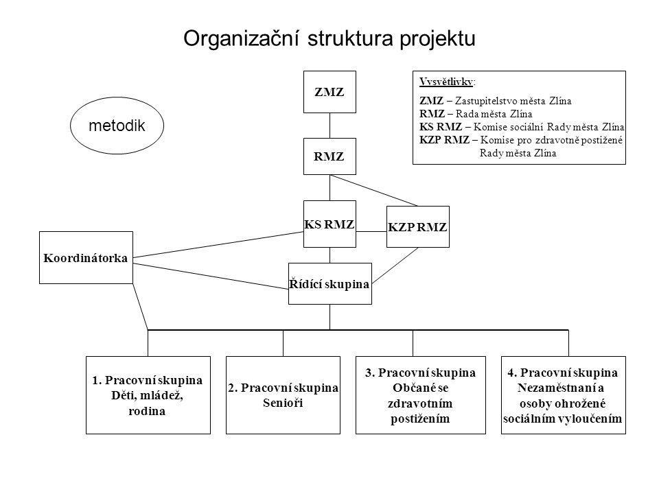 Organizační struktura projektu ZMZ RMZ KS RMZ Řídící skupina 1.