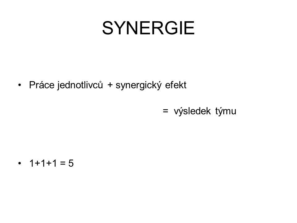 SYNERGIE Práce jednotlivců + synergický efekt = výsledek týmu 1+1+1 = 5