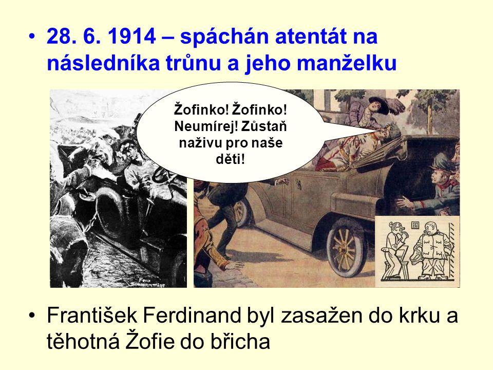 28. 6. 1914 – spáchán atentát na následníka trůnu a jeho manželku František Ferdinand byl zasažen do krku a těhotná Žofie do břicha Žofinko! Žofinko!N
