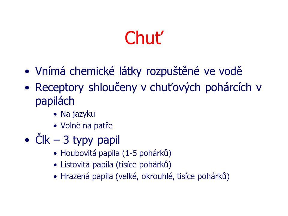 Chuť Vnímá chemické látky rozpuštěné ve vodě Receptory shloučeny v chuťových pohárcích v papilách Na jazyku Volně na patře Člk – 3 typy papil Houbovit