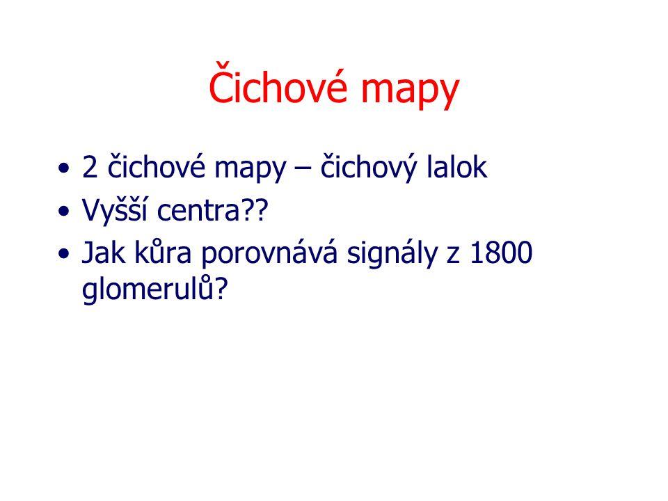 Čichové mapy 2 čichové mapy – čichový lalok Vyšší centra?.
