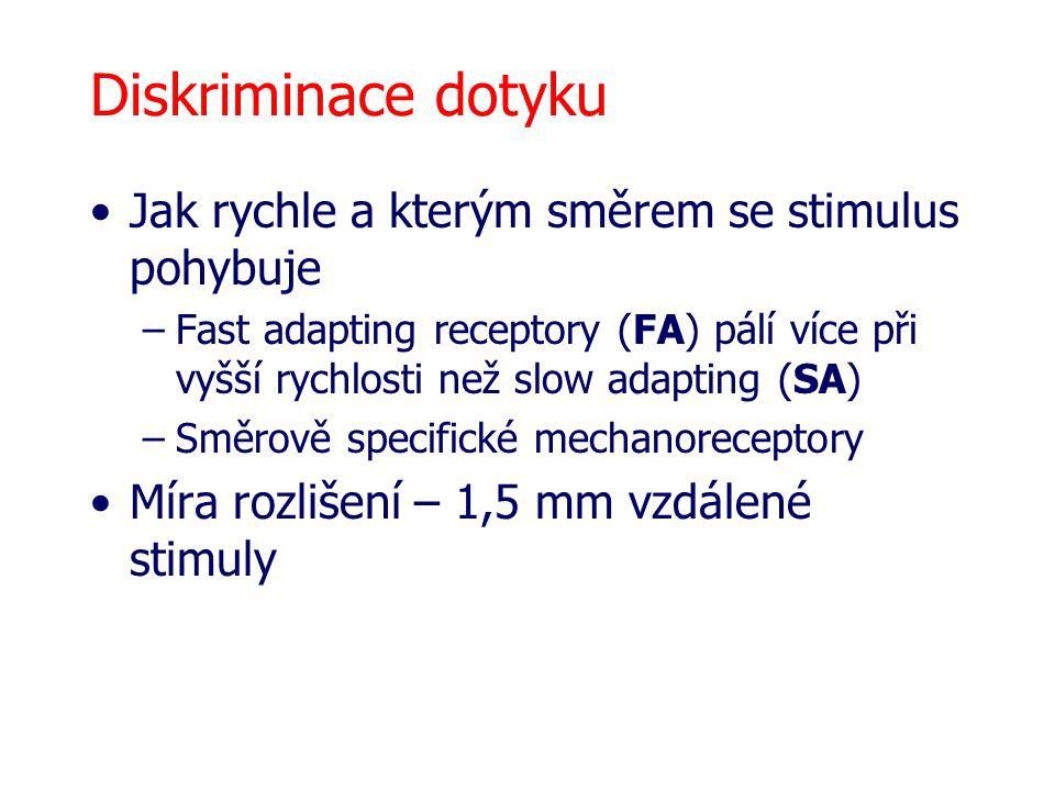 Diskriminace dotyku Jak rychle a kterým směrem se stimulus pohybuje –Fast adapting receptory (FA) pálí více při vyšší rychlosti než slow adapting (SA)