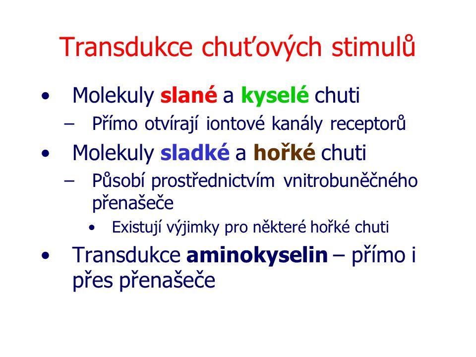 Čichový lalok Čichový nerv Pyriformní kůra Entorhinální kůra Orbitofrontální komplex Frontální lalok Z thalamu Do thalamu